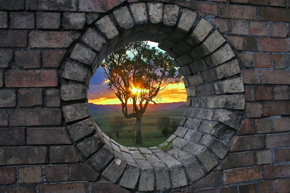 The Hole View by rossco