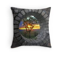 The Hole View Throw Pillow