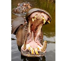 Big mouth. Photographic Print