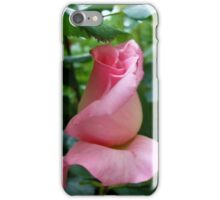 Pink bud iPhone Case/Skin