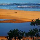 Snowy River out to Sea by Bette Devine