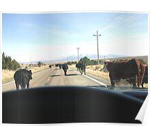 redneck rush hour,,,, Poster