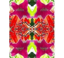 Kaleidescape Photographic Print