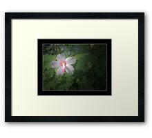 My Love Is Pure Framed Print