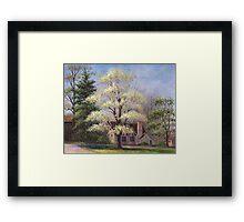 Clouds of Spring Framed Print