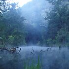 Faerie Mist by Nathalie 2day