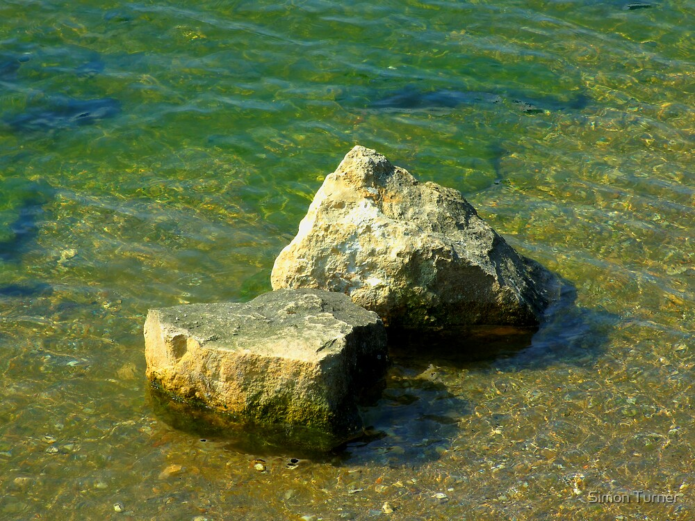 Rock in the water by Simon Turner