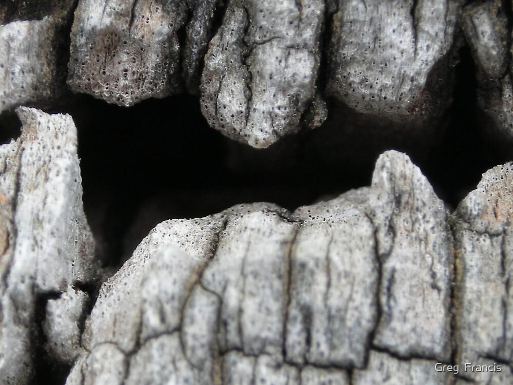 wooden teeth by Greg  Francis