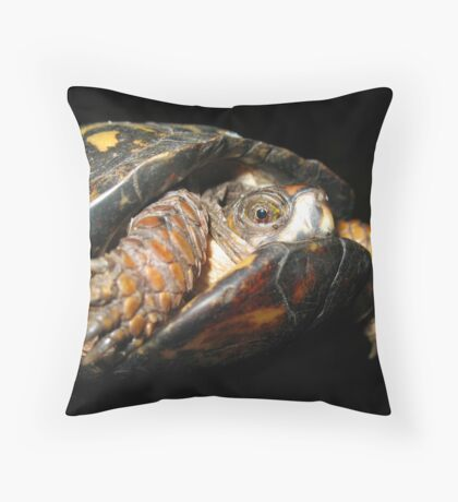 A Timid Turtle Throw Pillow