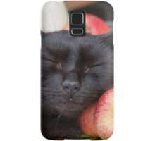 black cat on old barrel Samsung Galaxy Case/Skin