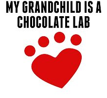 My Grandchild Is A Chocolate Lab by kwg2200