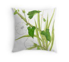 Rutland Beauty - Calystegia sepium Throw Pillow