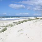 Gold Coast Beach Sunny Sunday in September   [,please read] by Virginia McGowan