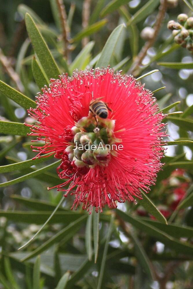 Busy Bee #2 by JadeAnne