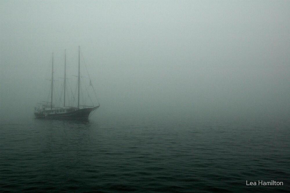 Pirate Ship? by Lea Hamilton