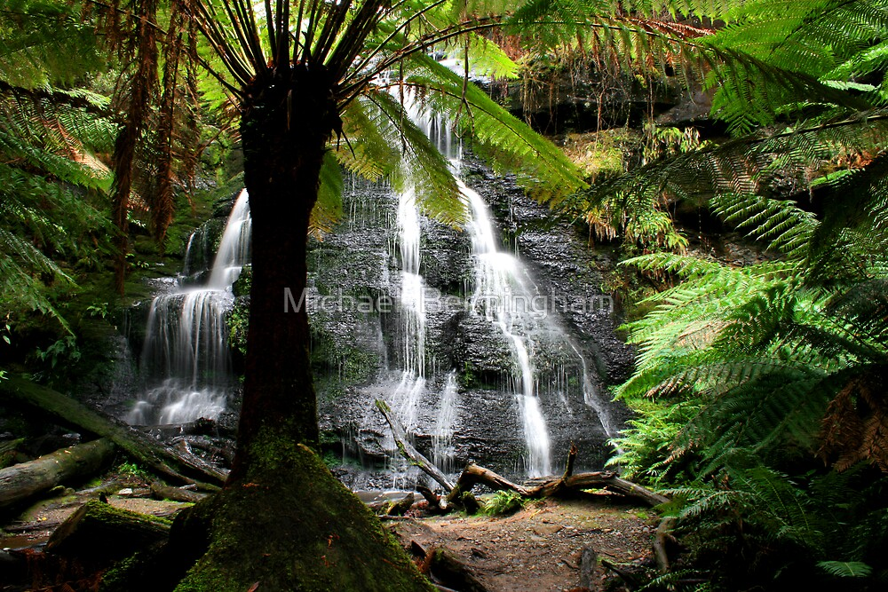 Henderson Falls Victoria by Michael  Bermingham