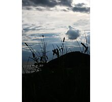 Mountain, grass, sky and cloud Photographic Print