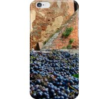 Grape harvest iPhone Case/Skin