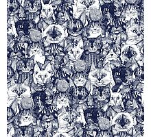 CHRISTMAS CATS blue Photographic Print