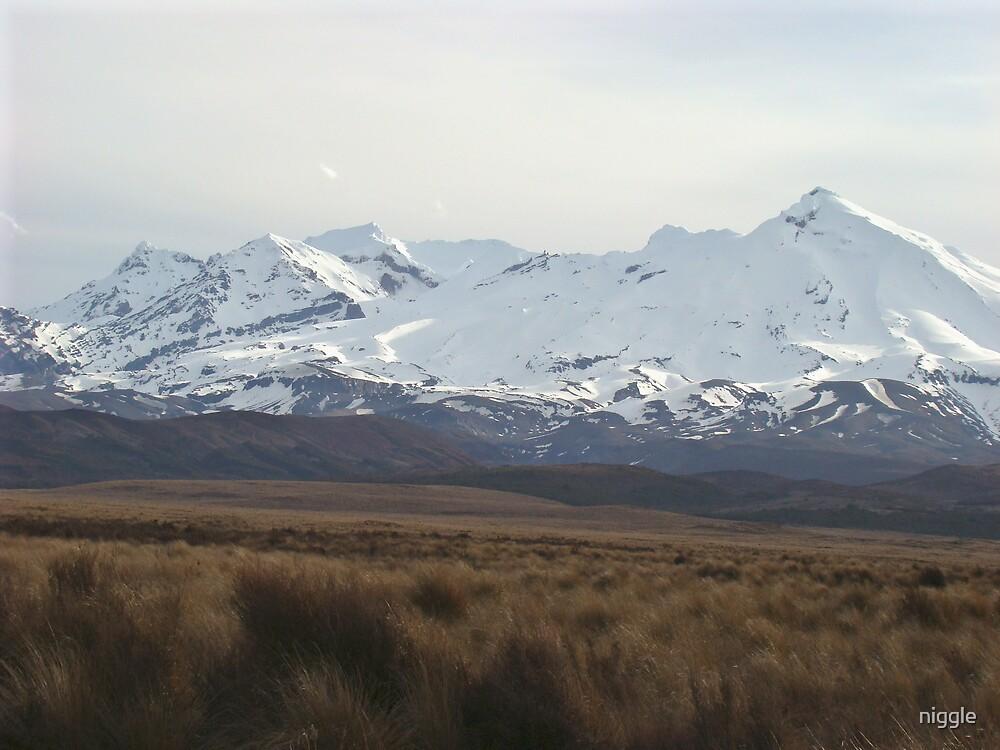 Tongariro National Park NZ by niggle