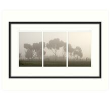 Foggy Mornings... Art Print