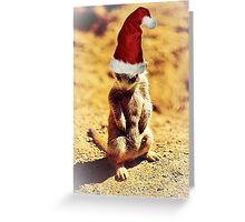 Where Are My Presents? Greeting Card