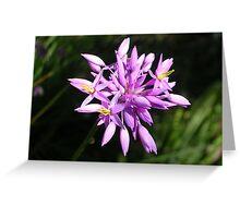 Purple Tassels Greeting Card