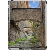 Ancient Way iPad Case/Skin