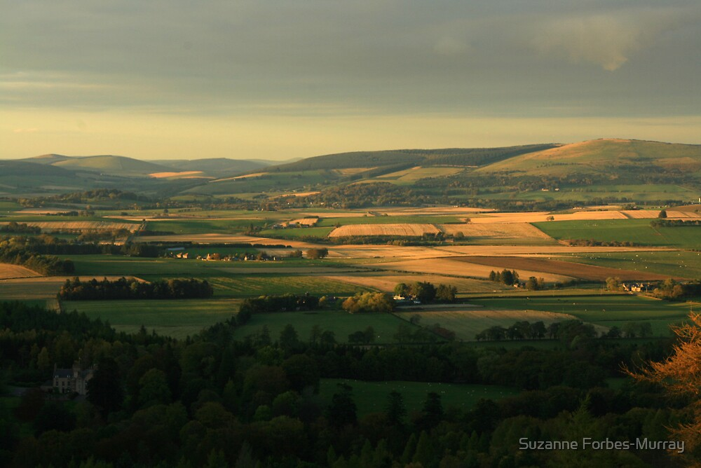 Rural Aberdeenshire by Suzanne Forbes-Murray