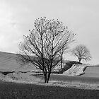 Cold Light of Day by Mark Baldwyn