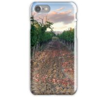 Vineyard in Tuscany iPhone Case/Skin