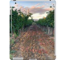 Vineyard in Tuscany iPad Case/Skin