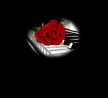 Rose Piano Circle by katieblueeyes