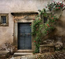 Facade with roses by SpikeFlutie
