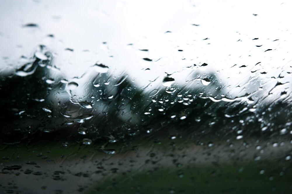 rain by alittlepinkbear