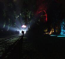 Brodsworth Hall Gardens by barnsleysteve