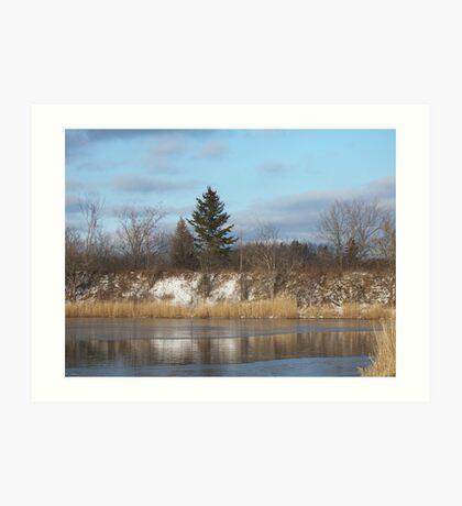 Freezing Pond Art Print