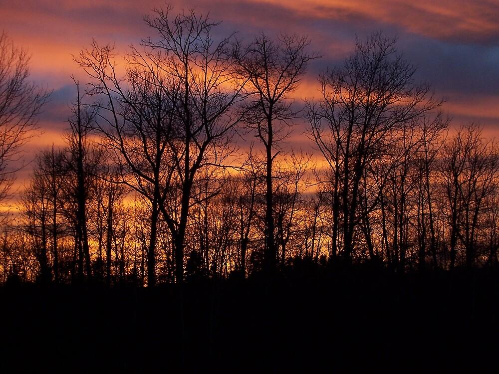 Dark Sunset by Gene Cyr