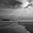 Les Iles de Medes by Paul Pasco