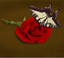 Butterfly on Rose on Wood by katieblueeyes
