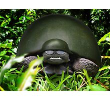 Slow Commando Turtle Helmet Photographic Print