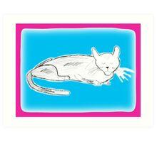 Cat Nap 1 Art Print