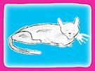 Cat Nap 1 by John Douglas