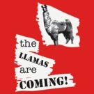 The Llamas - new by ArtbyCowboy