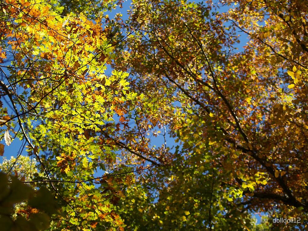 Autumn Sky by dolldoll12