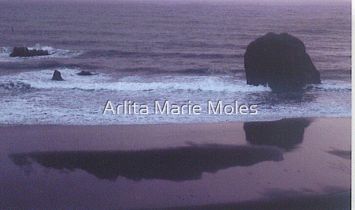 Soft Pastel by Arlita Marie Moles