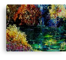 pond 3 Canvas Print