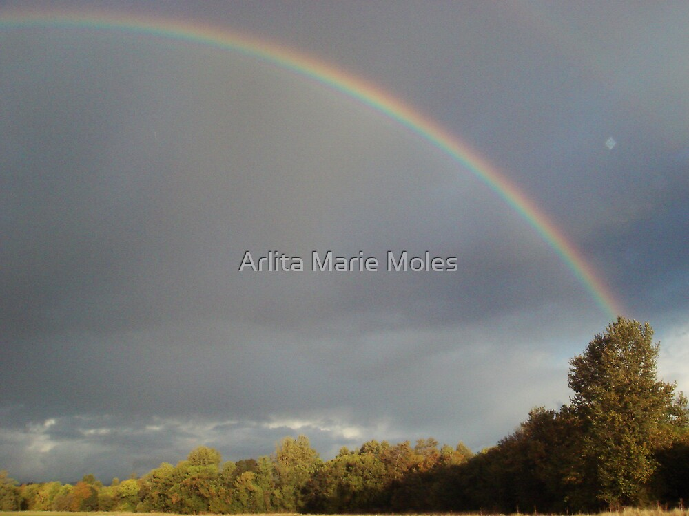 Rainbow of Promise by Arlita Marie Moles