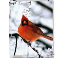 Cardinal in Tree iPad Case/Skin