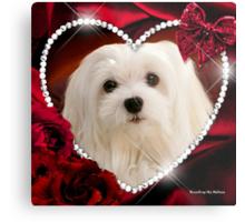 Snowdrop the Maltese - Sweet Valentine Metal Print